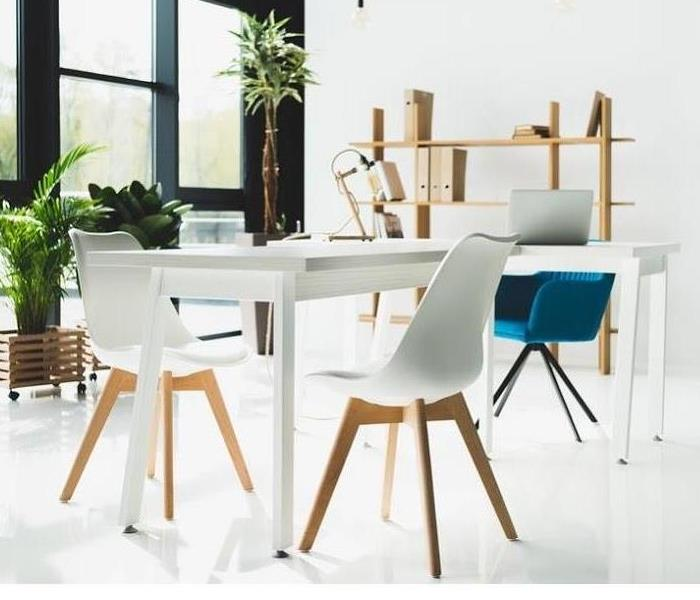 White table and chairs surround by multiple plants in a small modern office space